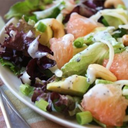Outrageously Good Holiday Salad Recipe - The tangy flavor of fresh grapefruit sections combines perfectly with the mellow tastes of avocado and Swiss cheese in a holiday-worthy green salad served with poppy seed dressing.