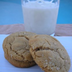 Peanuttiest Peanut Butter Cookies Recipe - If you love peanut butter then get ready for the peanuttiest peanut butter flavored cookie you have ever tasted!