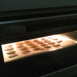Chocolate Chip Cookies in the Making