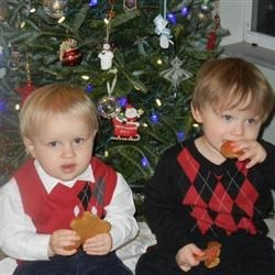 Yummy gingerbread cookies