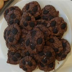 Chocolate Truffle Cookies with Sea Salt Photos ...