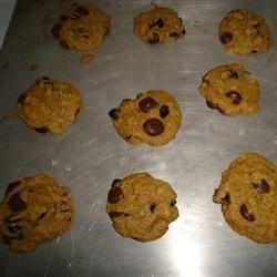 Chocolate Chip Snookies