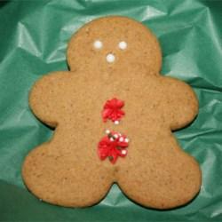 Sweet Gingerbread Man!