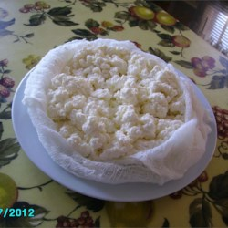 Homemade Fresh Cheese Recipe - This is the simplest recipe that I use to make a version of Mexican 'Queso Fresco' and the same recipe for Homemade Ricotta Cheese.