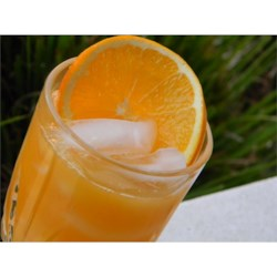 Peach Drink Recipe - Just peach nectar and orange juice poured over ice - simply mahvelous.