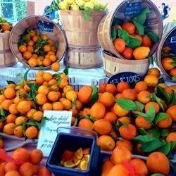 Local Citrus in LA