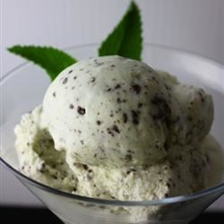 "Easy Mint Chocolate Chip Ice Cream Recipe - ""This is a GREAT mint chocolate chip ice cream that I discovered by accident. The 2% milk makes the ice cream taste 'lighter' I think."""