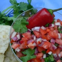 Ex-Girlfriend's Mom's Salsa Fresca (Pico de Gallo) Recipe - Tomatoes, red onion, jalapeno pepper, cilantro, and lime juice combine in this fresh-tasting salsa that's served with chips or as a condiment for all your favorite Mexican dishes.