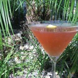 Citrus Pomegranate Martini