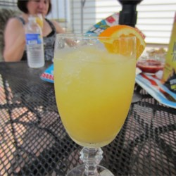Gin Slush Recipe - A frozen citrus concoction with gin. Mix with lemon-lime soda to serve.