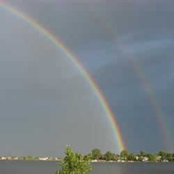 double bow