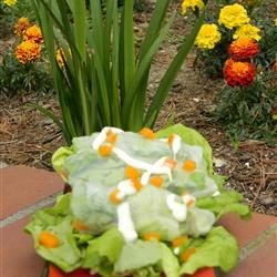 Chicken Caesar Spring Rolls Recipe - These chicken Caesar spring rolls, with their delicate spring roll wrappers, fresh romaine lettuce, and strips of bell pepper, are a great alternative to traditional wraps.
