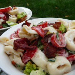 Tortellini Bacon Broccoli Salad Recipe - A pasta salad made with cheese tortellini, bacon, and broccoli makes a flavorful side dish, and it's hearty enough to make a lunch or light meal, too.