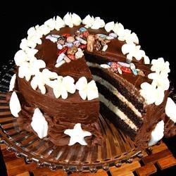 Starfish Chocolate Cake