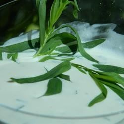 Delicious Ranch Dressing Recipe - Fresh herbs make this buttermilk salad dressing a standout!
