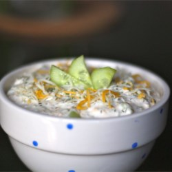 Kyle's Cucumber Dip Recipe - Cream cheese, chopped cucumber, and a few easy seasonings combine in a simple and refreshing spread to serve with crackers.