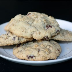 Chocolate Crispy Cookies Recipe - A neat little variation to the chocolate chip cookie made with rice krispies!
