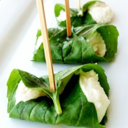 Prim's Basil-Wrapped Goat Cheese Balls Recipe - This goat cheese and basil leaf appetizer is a tribute to 'The Hunger Games' character Prim. She gives her sister Katniss a gift of goat cheese wrapped in a basil leaf on the morning of Reaping Day, foreshadowing the fate of their family.