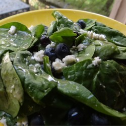 Blueberry Spinach Salad Recipe - A lovely salad with fresh blueberries, candied pecans, and blue cheese. The homemade salad dressing is the best and brings the flavors together nicely!
