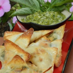 Chicken Won Tons Recipe - Just wrap leftover chicken in won tons and bake!  You can serve them plain or with salsa or soy sauce, chutney or cheese dip--anything goes.