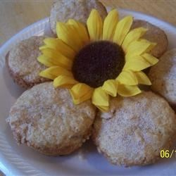 Doughnut Muffins Recipe - Muffins which taste like doughnuts, topped with a delicious cinnamon sugar mixture.