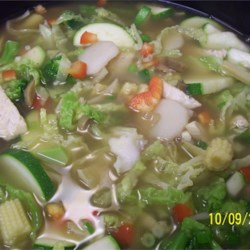 Chinese Chicken Vegetable Soup Recipe - This soup, made with chicken meat, Asian flavorings, and lots of delicious fresh vegetables, is ready in less than 1 hour.
