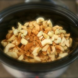 Slow Cooker Cider Applesauce (No Sugar Added)