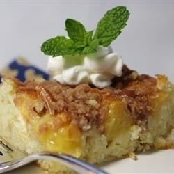 Peach Coffee Cake II Recipe - This is a great recipe I came up with when our white peach tree yielded sooo many peaches I had to figure out many ways to use them.... Even my kids love this one -- they will eat it all day....