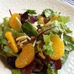 Orange Almond Mixed Green Salad Recipe - This is a quick and easy salad idea with a homemade vinaigrette drizzled over a mixture of lettuce, mandarin oranges, and almond slivers.