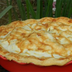 French Tourtiere Recipe - This recipe was given to me as part of a bridal shower gift.  My husband loves meat and pies, so he was practically in heaven when I made this for him!   I have also used a refrigerated pie crust and it is just as good. Originally submitted to PieRecipe.com.