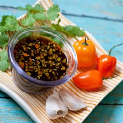 Spicy Habanero Dipping Sauce Recipe - This spicy sauce with fresh habanero pepper is a great accompaniment for vegetables or grilled meats.
