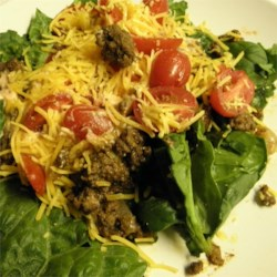 Paleo Taco Salad Recipe - This paleo-style taco salad is built on romaine lettuce and cherry tomatoes and is topped with a creamy salsa sauce, cilantro, and shredded Cheddar cheese.