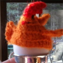 Soft Boiled Egg Chicken Cozy
