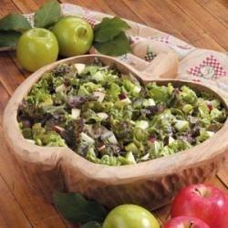 Apple Lettuce Salad