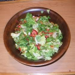 Strawberry Romaine Salad II Recipe - This is a great salad with lots of taste sensations  - strawberries, mandarin oranges, red onions, and tomatoes. The poppy seed dressing is very different; it is made with honey, cherry juice, lemon juice, and mayonnaise.