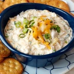 Maryland Crab Dip Recipe - Chunks of crabmeat in a creamy base with lots of cheese is topped with chopped green onions and served warm.