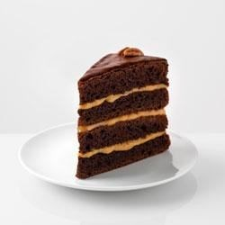 Chocolate-Caramel Turtle Torte Recipe - This layer cake includes layers of devil's food cake, pudding, whipped topping, caramels, and pecans for a simple yet elegant dessert.
