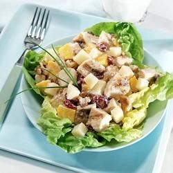 Mango-Curry Chicken Salad Recipe - A tasty combination of grilled chicken, diced mangos, sweet cranberries and crunchy walnuts all spiced with curry on top of a bed of lettuce.  Made with nutrient-rich, fat-free yogurt, and try reduced-fat Mozzarella cheese. The cheese does contain a small amount of lactose, and the live and active cultures in yogurt help digest lactose, making this recipe a friendly option for those who are lactose intolerant.