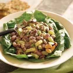 Creamy Peanut Butter Bean Salad Recipe - A yogurt and peanut butter dressing bring fresh new flavors to this bean salad with celery, green onions, and chopped pickle.