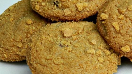 Easy Graham Cracker Cookies