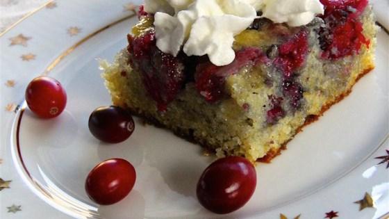 Fresh Cranberry Cake