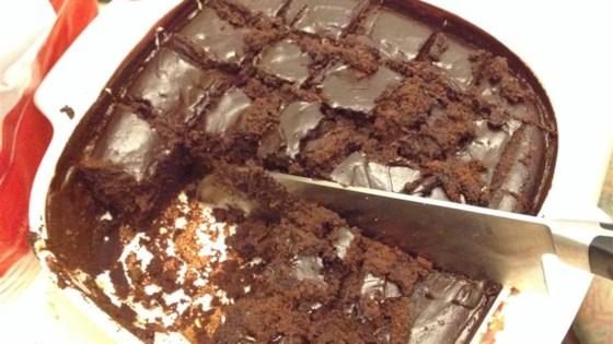 Mississippi Mud Cake III