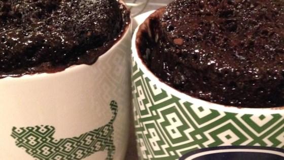 Low Calorie Nutella Mug Cake