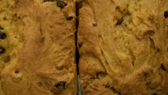 Raisin Pumpkin Bread Gluten Free