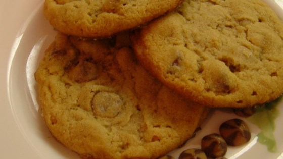 Old Fashioned Peanut Butter Chocolate Chip Cookies