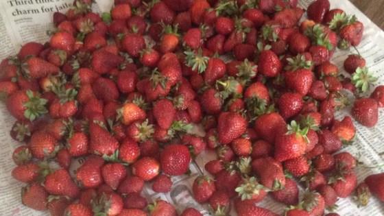 Strawberry Preserves I