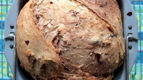 Cranberry Oat Bread