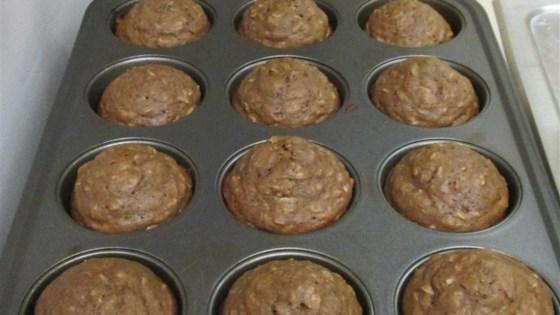 Chocolate Raisin Oatmeal Muffins
