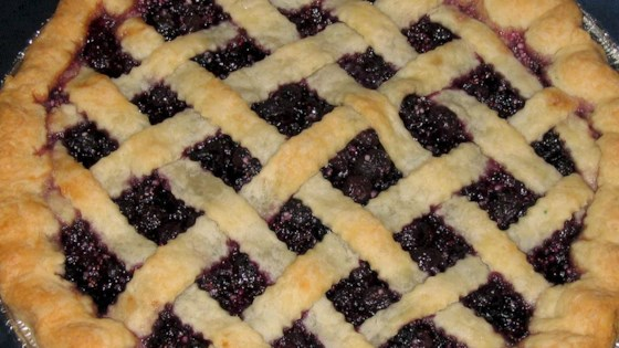 Fresh Blueberry Pie I