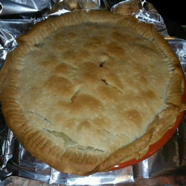 Chicken Pot Pie IX Photos - Allrecipes.com
